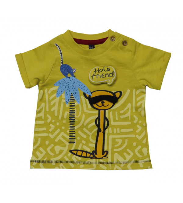 Baby Boys Printed n Applique T Shirt