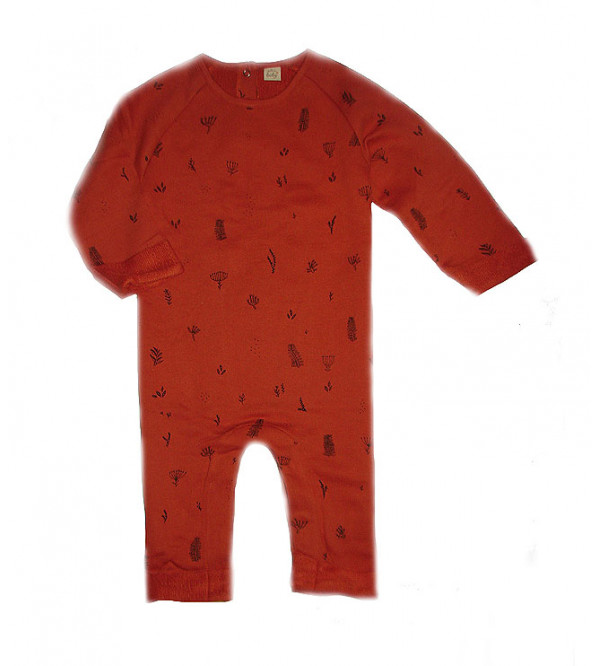 Baby Boys Printed Winter Playsuits