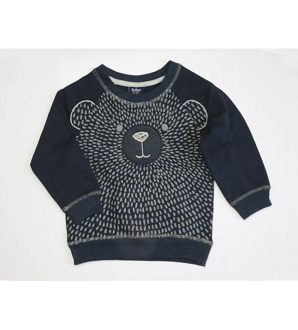 Baby Boys Pullover Sweatshirts With Applique