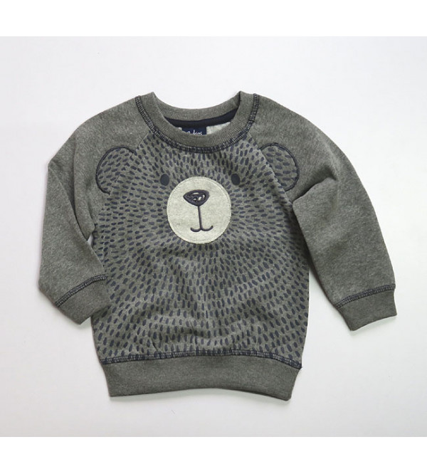 Baby Boys Pullover Sweatshirts With Applique
