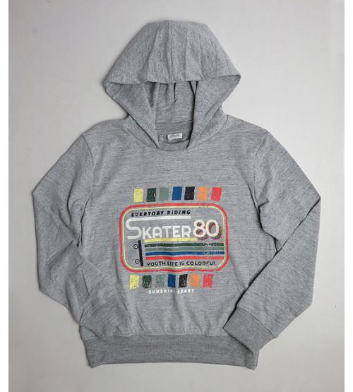 Boys Printed Pullover Sweatshirt With Hoodie