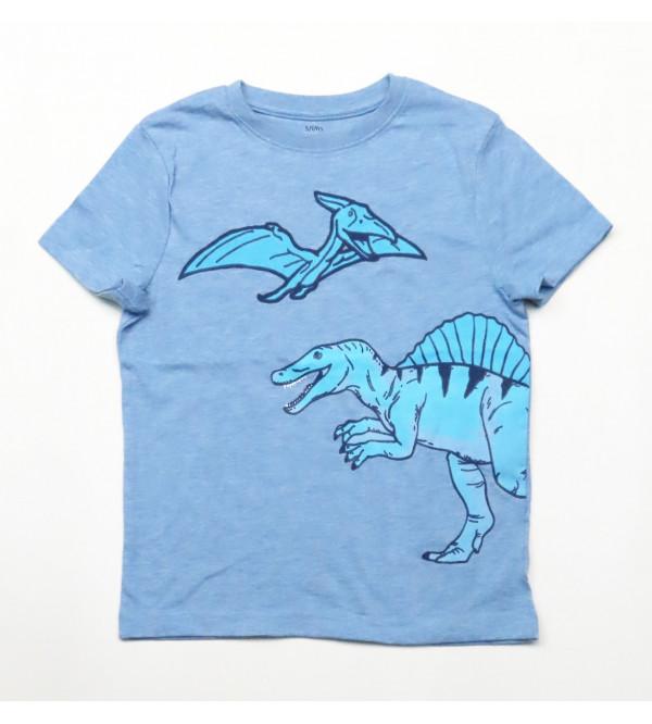 Dinosaur Printed Boys T Shirt
