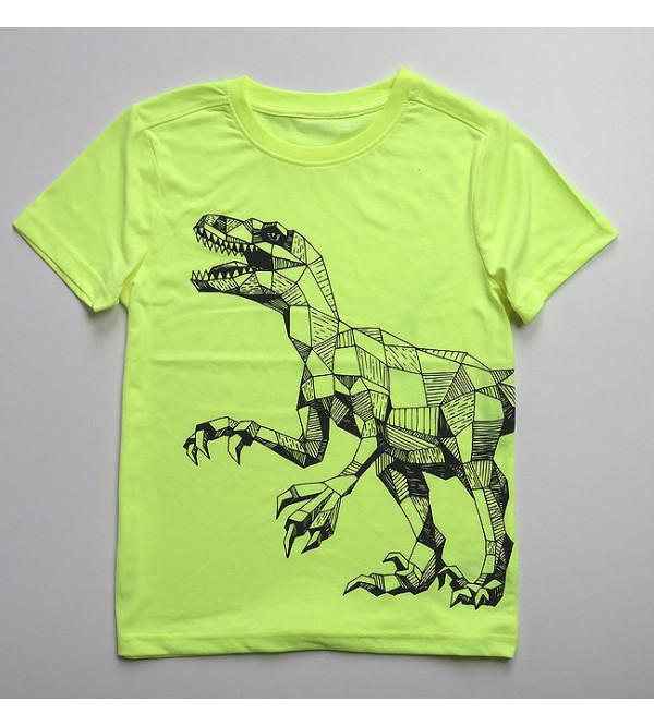 Dinosaur Print Boys T Shirts