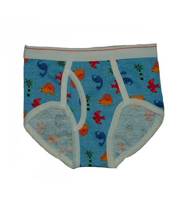 Boys Printed Outer Elastic Briefs
