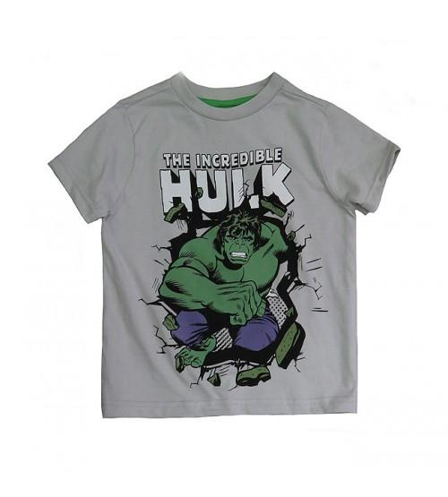 Hulk Boys Printed T Shirt
