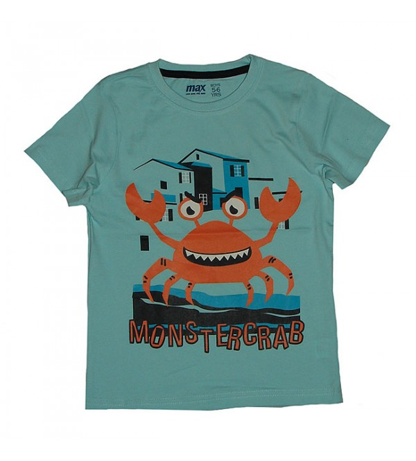 Boys Assorted T Shirts