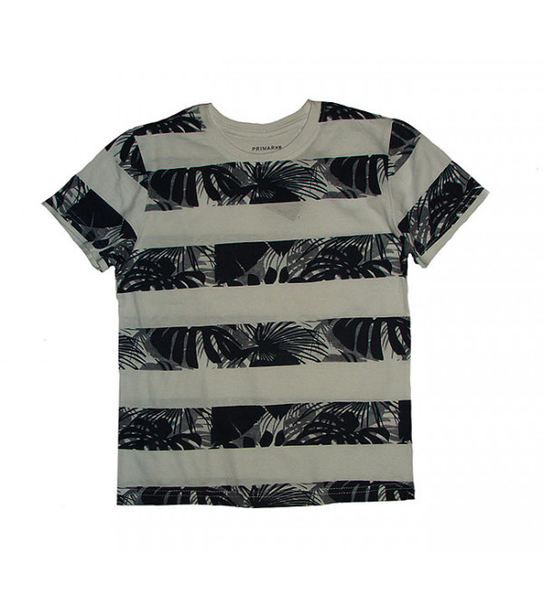 Boys Printed n Striped T Shirt