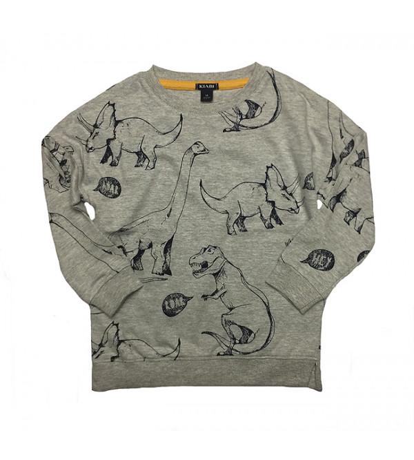 Dinosaurs Printed Boys Pullover Sweatshirt